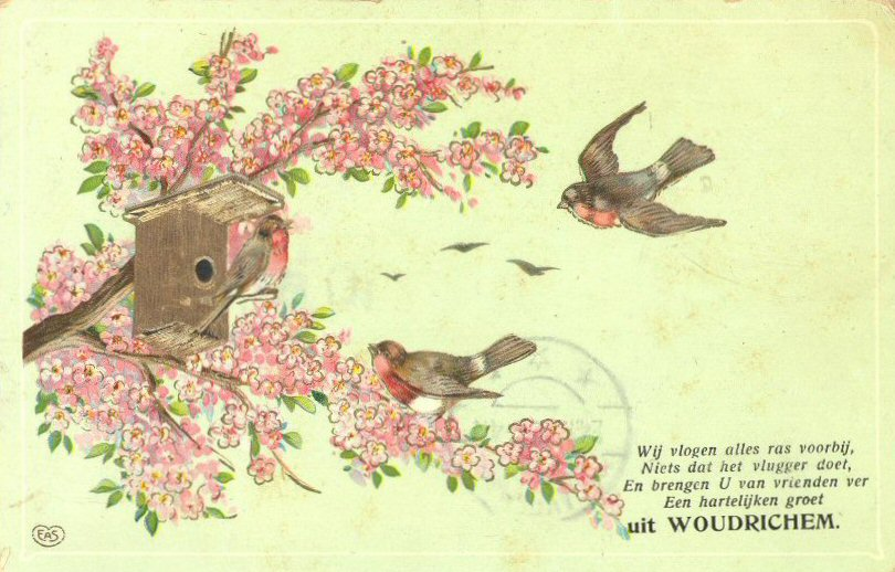 31 Groeten uit Woudrichem (024)
