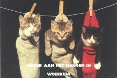 017 WOERKUM - lekker aan het hangen in