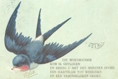 Groeten uit Woudrichem (041)