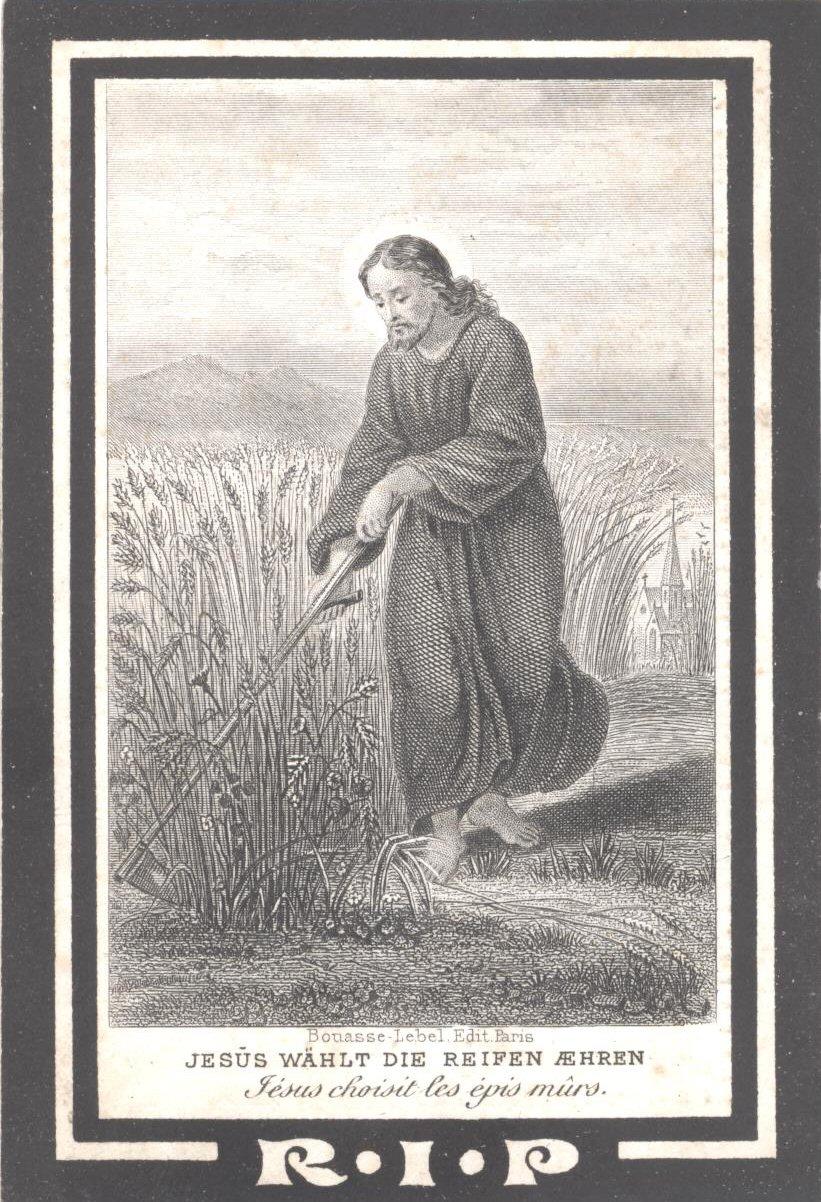 BIDP-014a 1803-Petrus Arnoldus de Bont