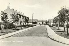 STRAAT -- Pieter Maasstraat (001)