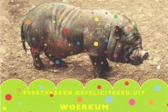011 WOERKUM - feestvarken gefeliciteerd uit